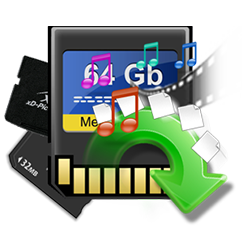 SD card lost data recovery dwarka